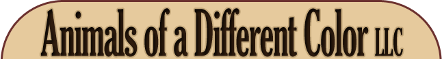 Animals of a Different Color LLC